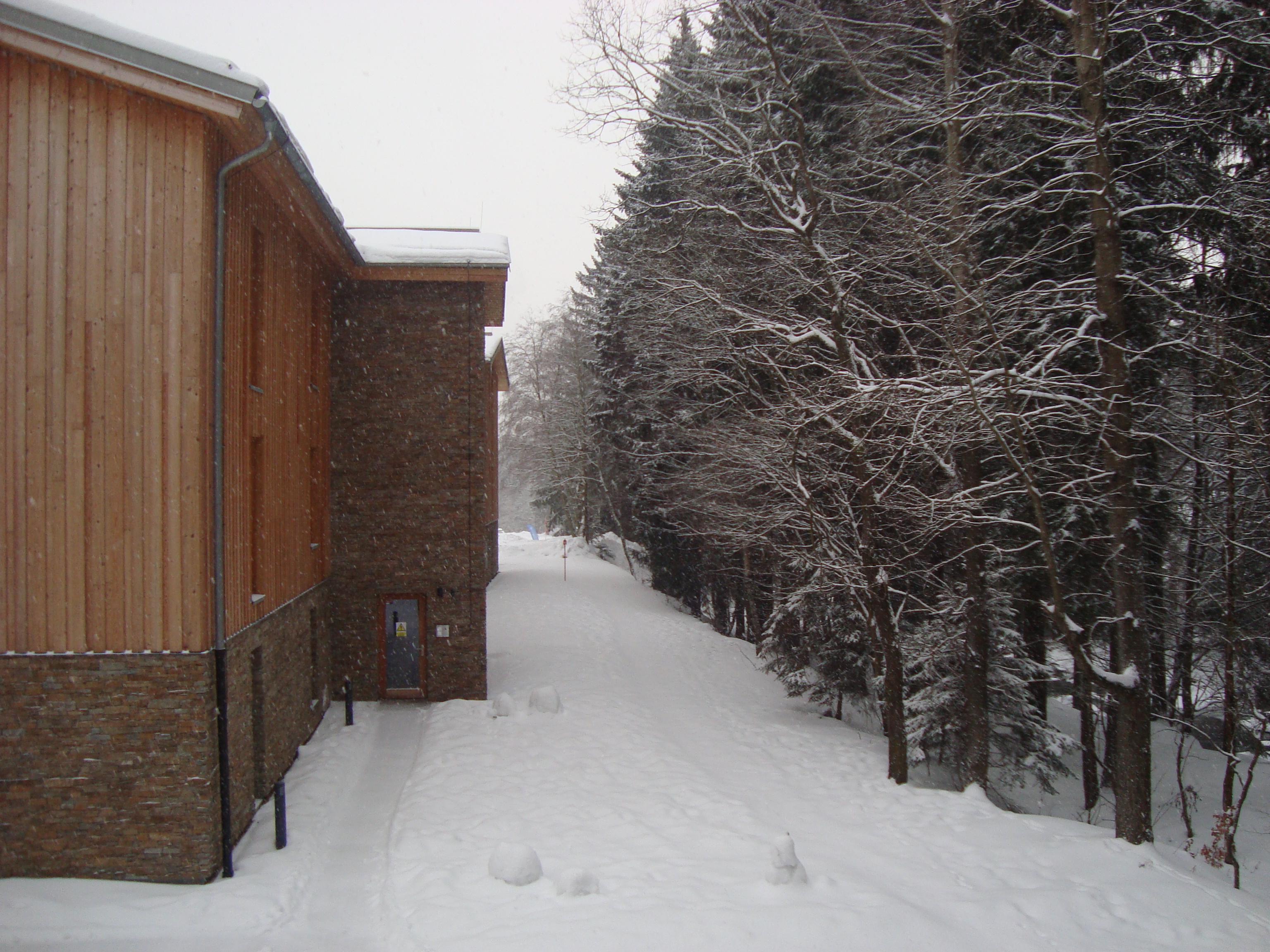 lesní porost hned u apartmánu poskytuje ubytovaným rodinám možnost klidných procházek